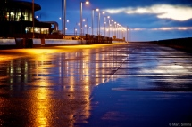 Post-Rain Reflections 5