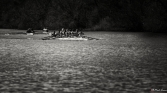 Rowing In Sepia