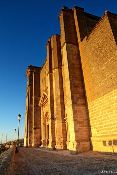 Colegiata de Santa Maria de la Asuncion