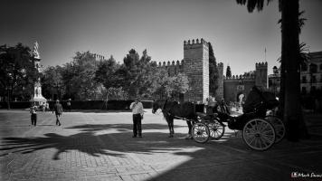Streets of Sevilla 5