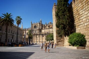 Streets of Sevilla 6