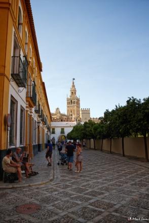 Streets of Sevilla 7