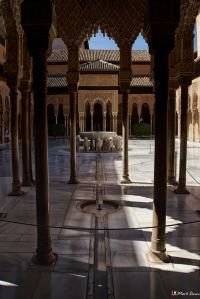 Nasrid Palaces 15