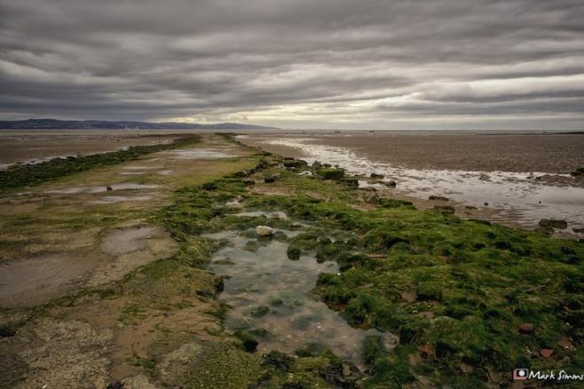 Dee Estuary 5
