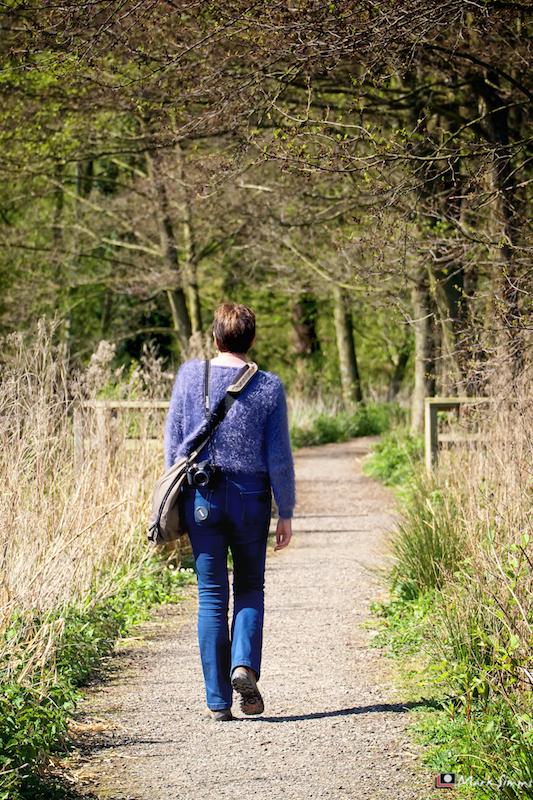 Burton Mere RSPB Reserve, Cheshire, England