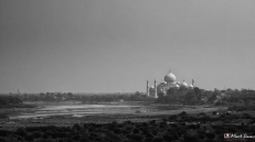 View of the Taj Mahal from the Red Fort, Agra, Uttar Pradesh, India