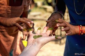 Hands, Ramathra, Rajasthan, India