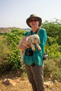Lizzy, Lamb, Ramathra, Rajasthan, India