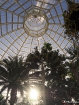 Sefton Park Palm House, Liverpool, Merseyside, England