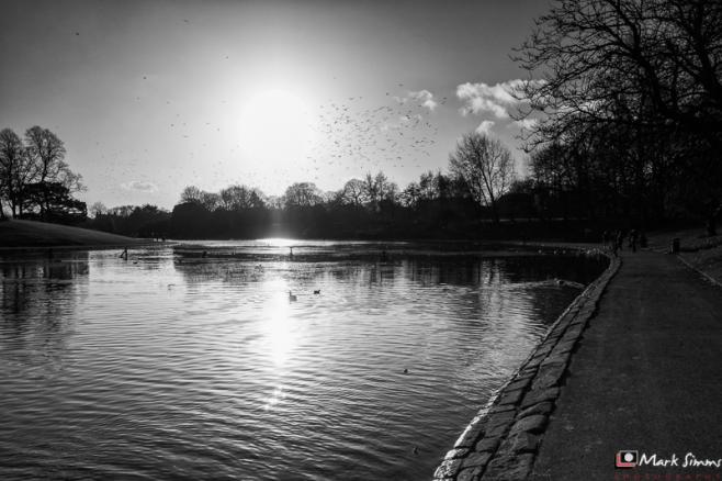 Sefton Park, Liverpool, Merseyside, England