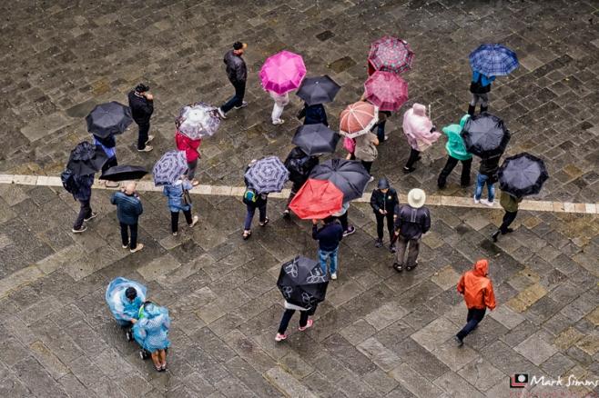 Umbrellas, Siena, Tuscany, Italy
