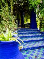Jardin Majorelle, Marrakech, Morocco, North Africa