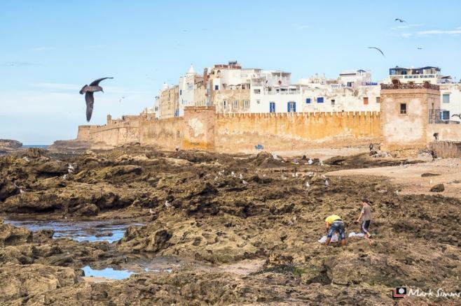 Essaouira, Morocco, North Africa