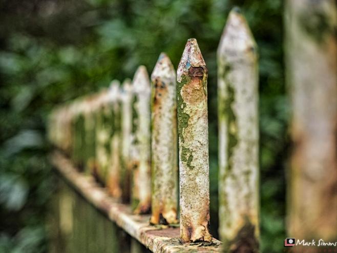 Rusty Railings, Bidston Hill, Wirral, England