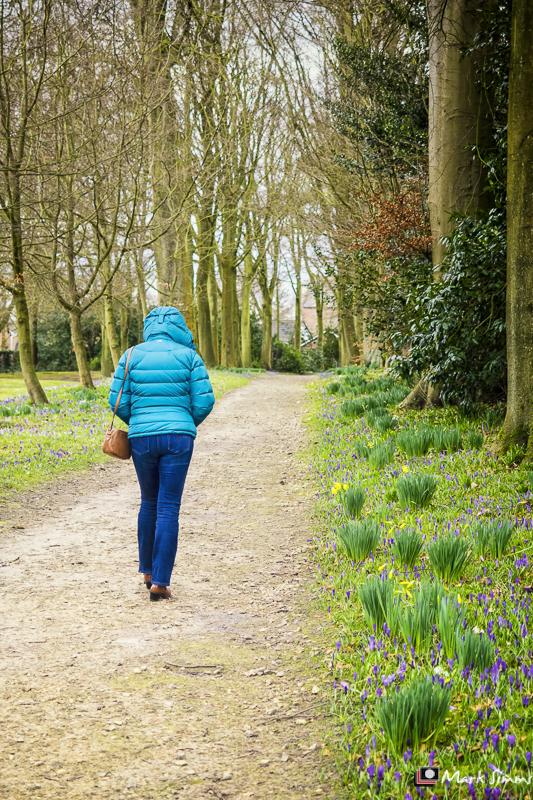Woodland Walk, Rufford Old Hall, Ormskirk, Lancashire, England
