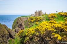 Dunnottar Castle, Stonehaven, Aberdeenshire, Scotland