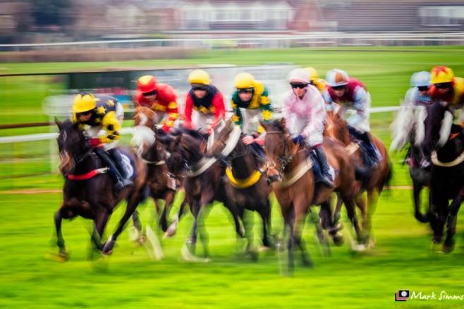 Horse Races, Hereford, Herefordshire, England